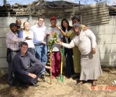 Fruit trees for Khayelitsha community