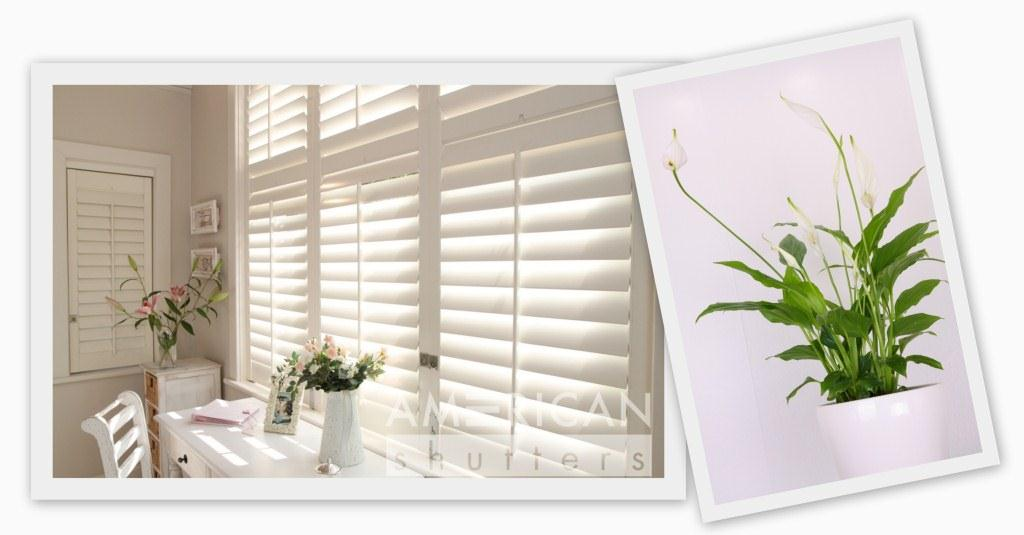 Create beautiful workspaces with AMERICAN shutters
