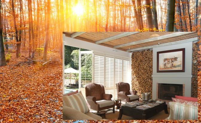 Autumn-colours-inspiration
